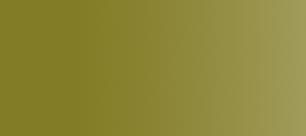 Vallejo Model Air 17ml Interior Green